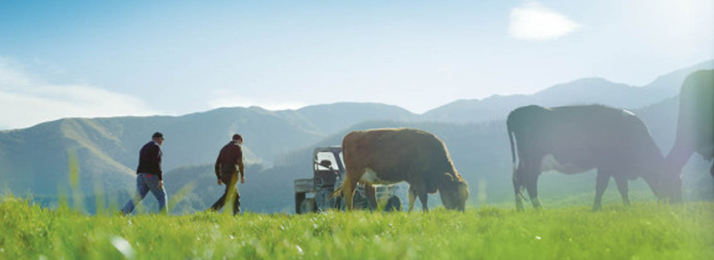 fonterra farm source farm source